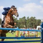 Lezione di equitazione Roma Centro
